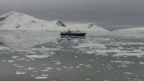 Expedition Vessel Ortelius waiting for us to come back by zodiacs later
