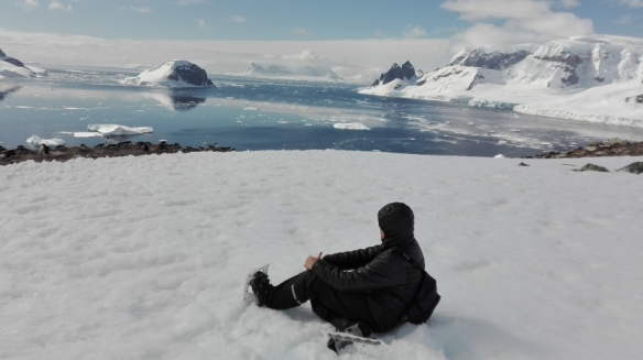 observing the magical view and the penguins